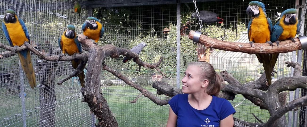 Profesionál pro Vaše exotické ptactvo